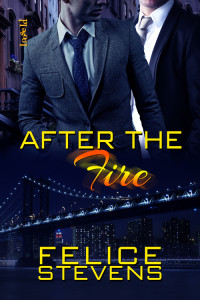 FS_AftertheFire_coverin