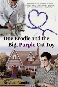 Copy of Doc Brodie and the Big, Purple Cat Toy - Brigham Vaughn