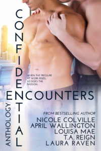 1 Confidential Encounters E-Book Cover